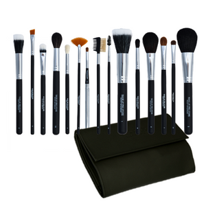 Fifteen Piece Brush Set