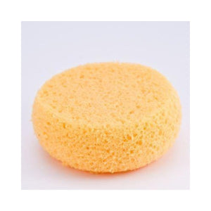 Cameleon Yellow Sponges
