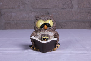 Little Storytime Owl