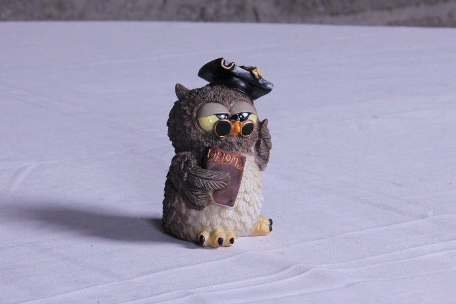 Little Graduate Owl