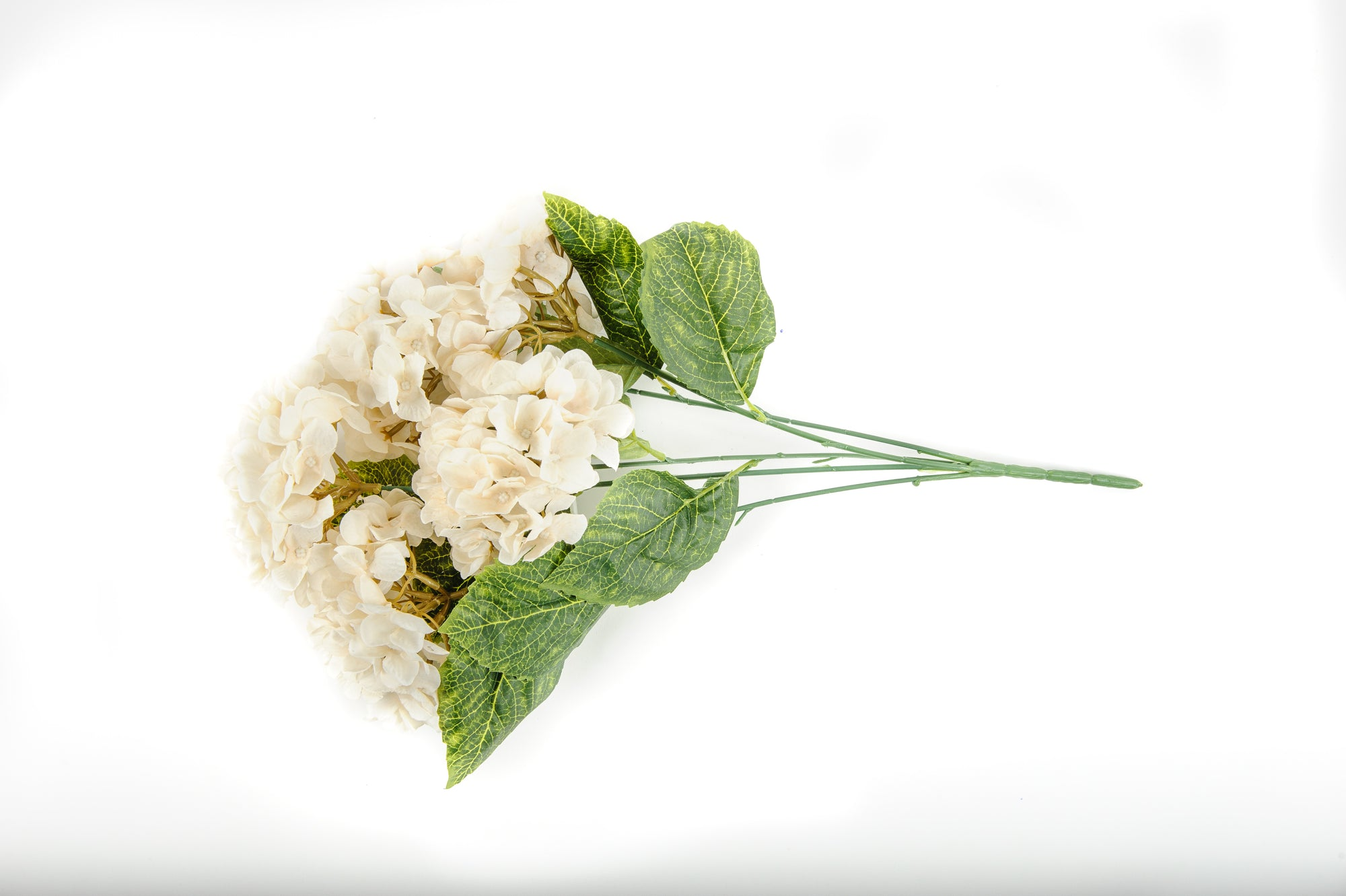 Hydrangea Bunch Antique Ivory Flowers - Fervor + Hue