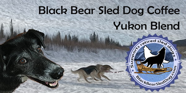 Black Bear Sled Dog Coffee