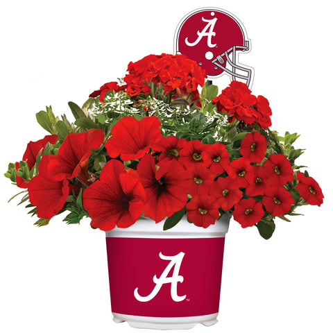 Alabama Crimson Tide - Summer Flower Mix