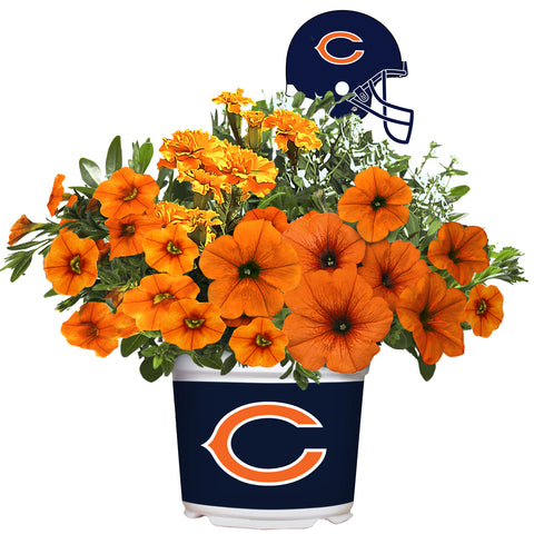 Chicago Bears - Summer Flower Mix