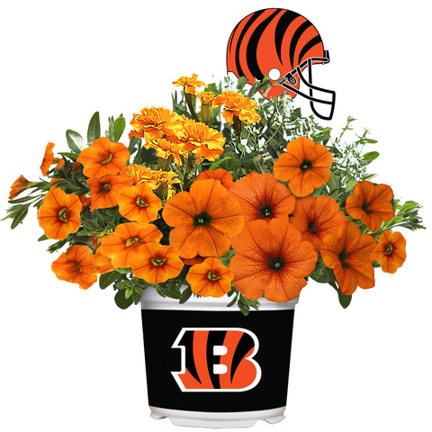 Cincinnati Bengals - Summer Flower Mix