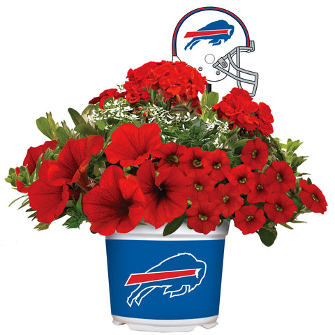 Buffalo Bills - Summer Flower Mix