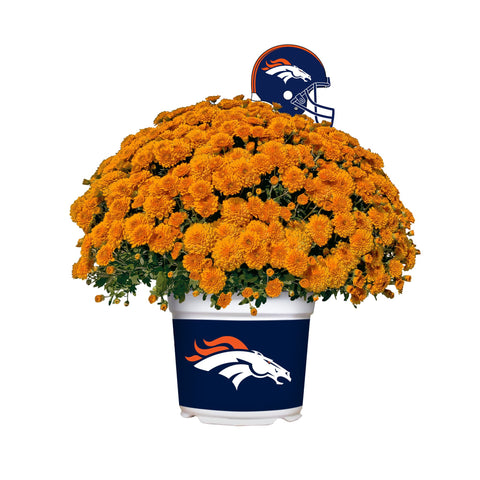 Denver Broncos - Team Color Mum