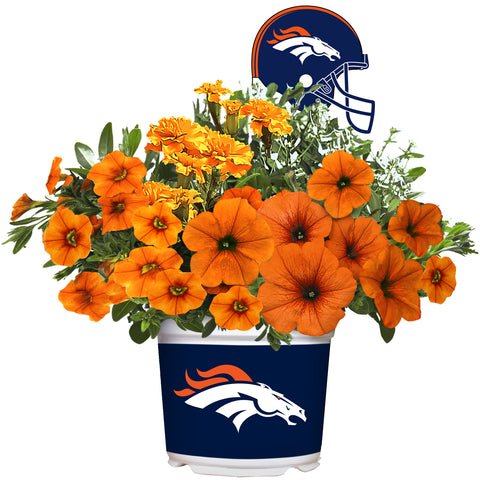 Denver Broncos - Summer Flower Mix