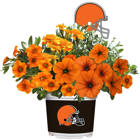 Cleveland Browns - Summer Flower Mix