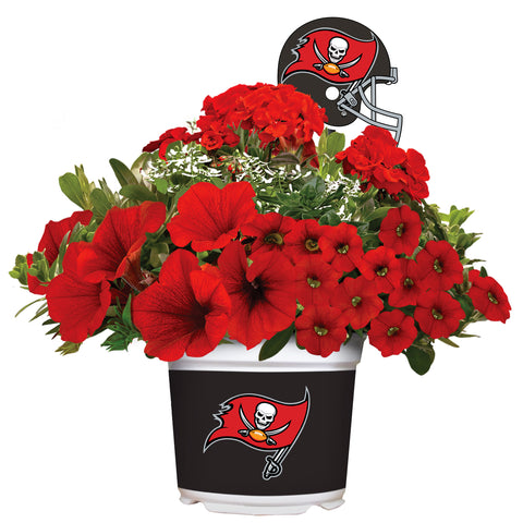 Tampa Bay Buccaneers - Summer Flower Mix