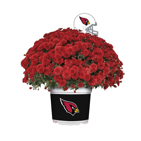 Arizona Cardinals - Team Color Mum