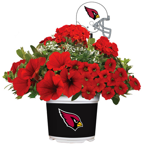 Arizona Cardinals - Summer Flower Mix