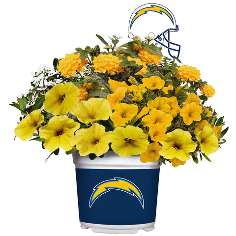 Los Angeles Chargers - Summer Flower Mix