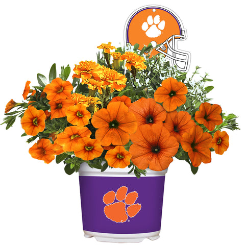 Clemson Tigers - Summer Flower Mix