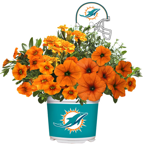 Miami Dolphins - Summer Flower Mix