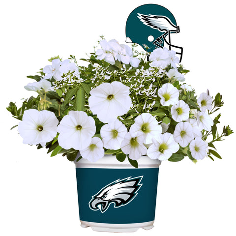 Philadelphia Eagles - Summer Flower Mix