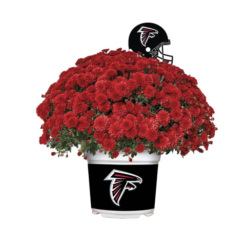 Atlanta Falcons - Team Color Mum