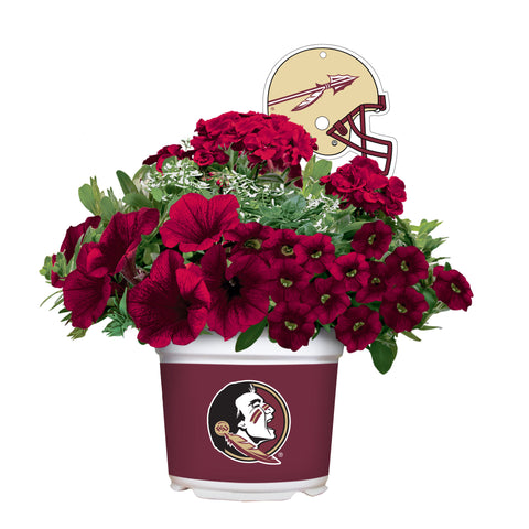 Florida State Seminoles - Summer Flower Mix