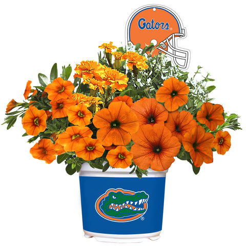 Florida Gators - Summer Flower Mix