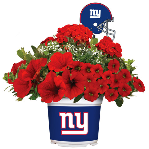 New York Giants - Summer Flower Mix