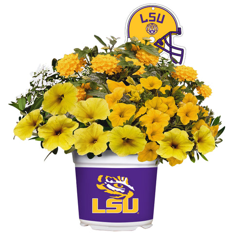 LSU Tigers - Summer Flower Mix