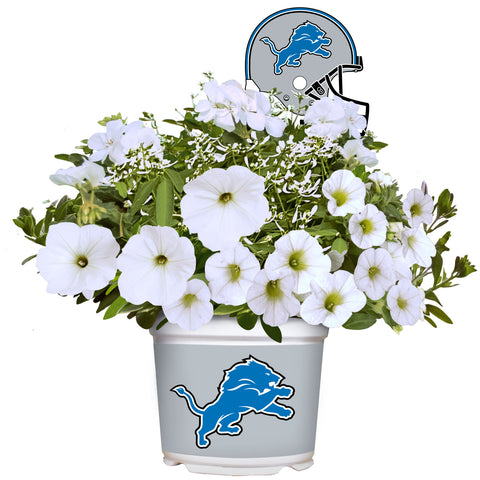 Detroit Lions - Summer Flower Mix