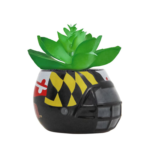 University Of Maryland Terrapins - Ceramic Helmet Planter –<br> Faux Succulent - Pack Of Two