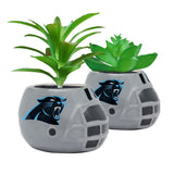 Carolina Panthers - Ceramic Helmet Planter – Faux Succulent - Pack Of Two