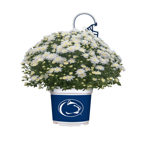 Penn State Nittany Lions - Team Color Mum