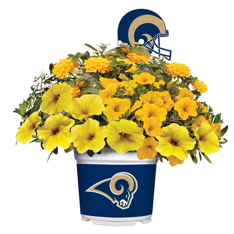 Los Angeles Rams - Summer Flower Mix