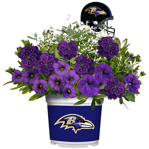 Baltimore Ravens - Summer Flower Mix