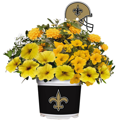 New Orleans Saints - Summer Flower Mix