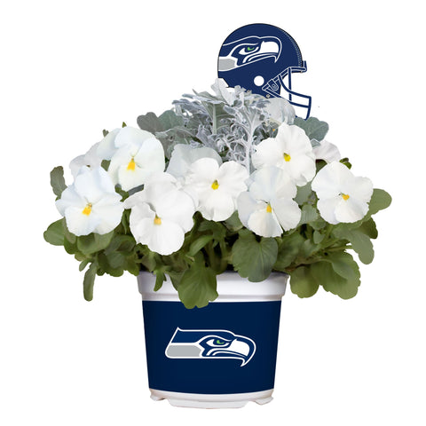 Seattle Seahawks - Pansy Mix