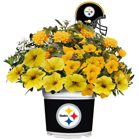 Pittsburgh Steelers - Summer Flower Mix