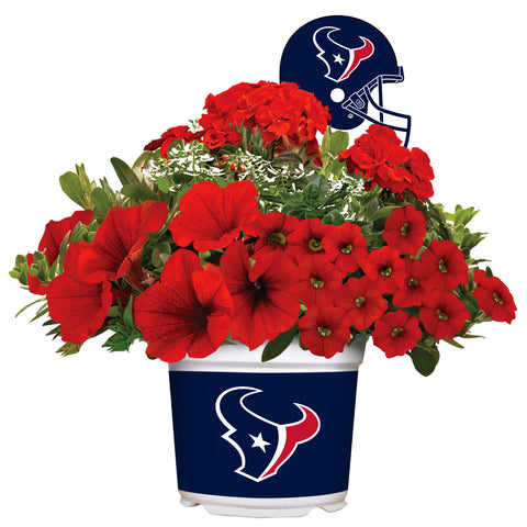 Houston Texans - Summer Flower Mix