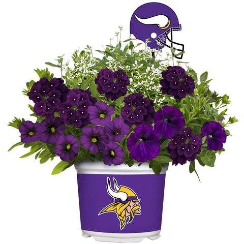 Minnesota Vikings - Summer Flower Mix