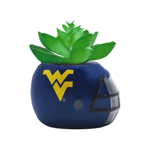West Virginia Mountaineers - Ceramic Helmet Planter – Faux Succulent