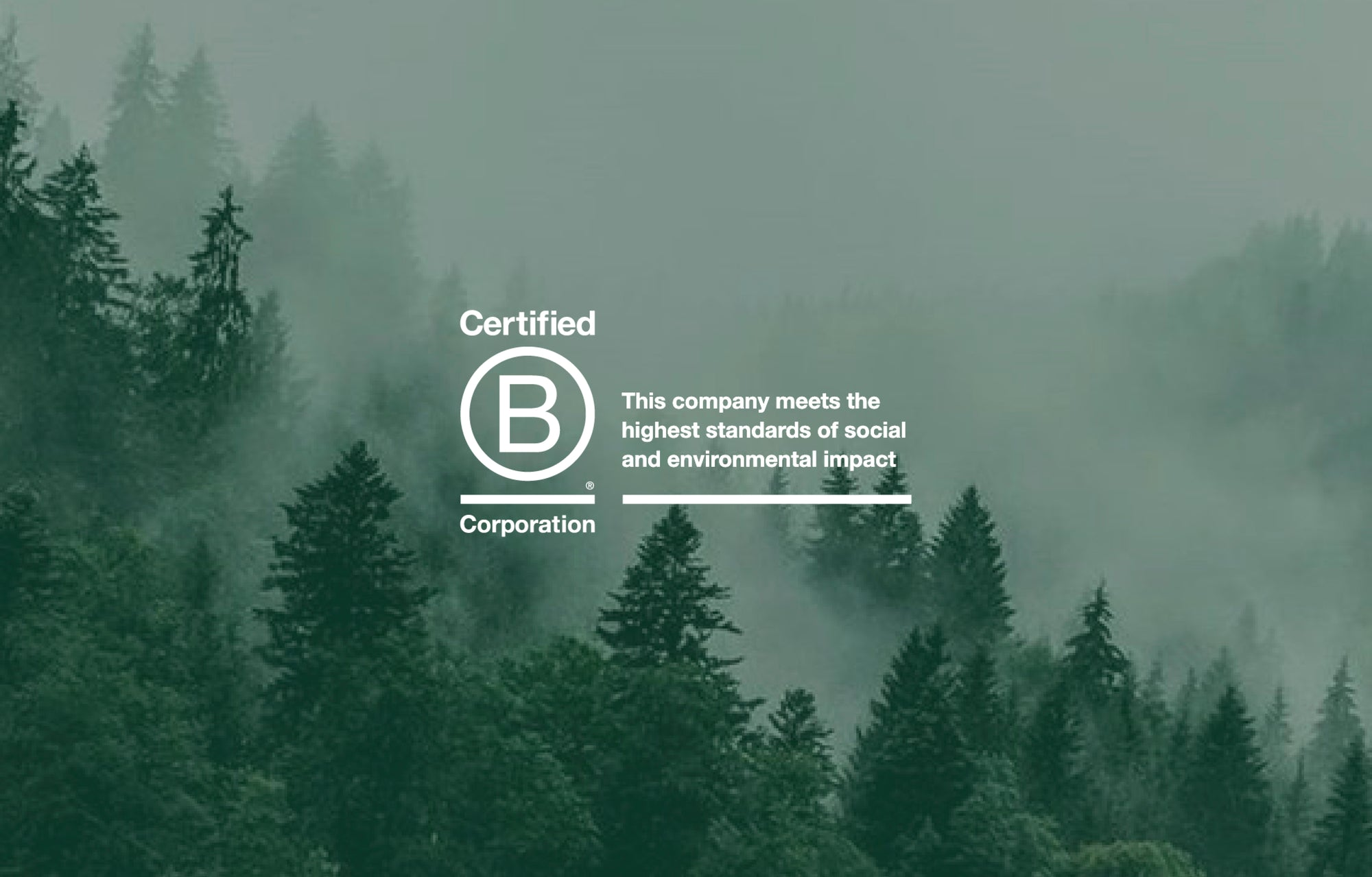 We are proud to be a B Corp™!