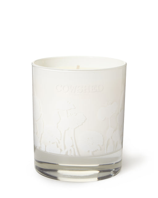 Seductive Candle | Horny Cow