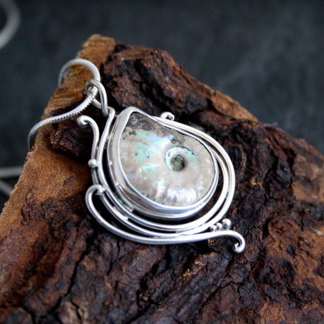 In the Flow With ammonite Fossil $225