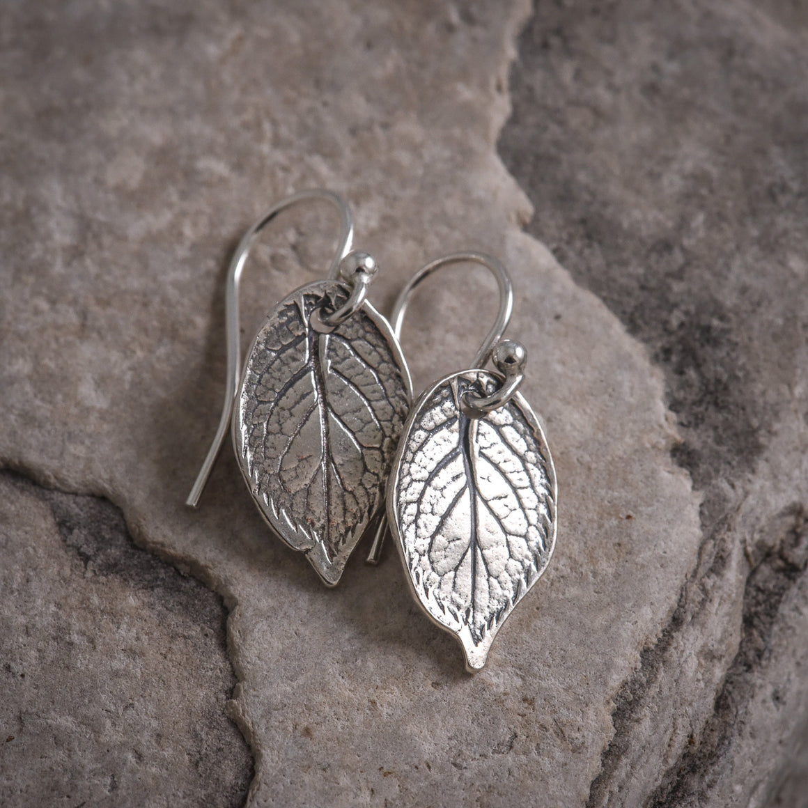 Rose Leaf Earrings in Silver