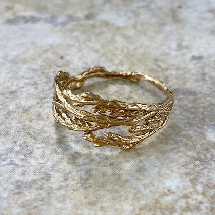 Cedar Ring in Bronze