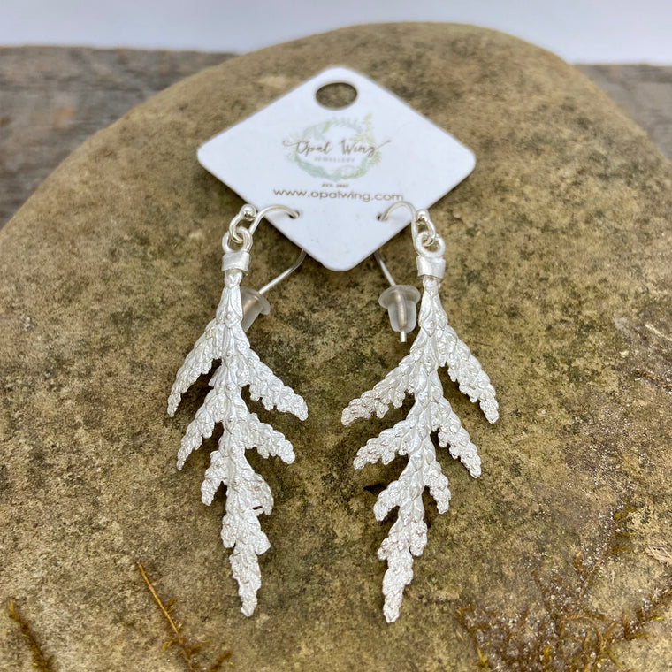 Small White Cedar Earrings