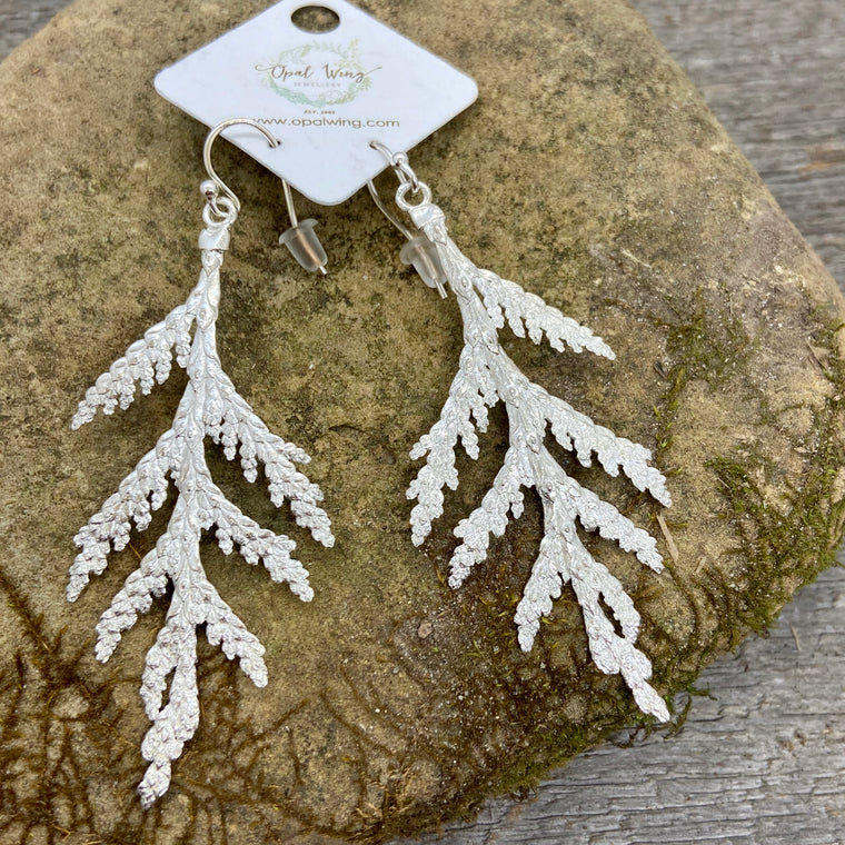 Large White Cedar Earrings in Silver