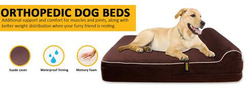 Orthopedic Beds