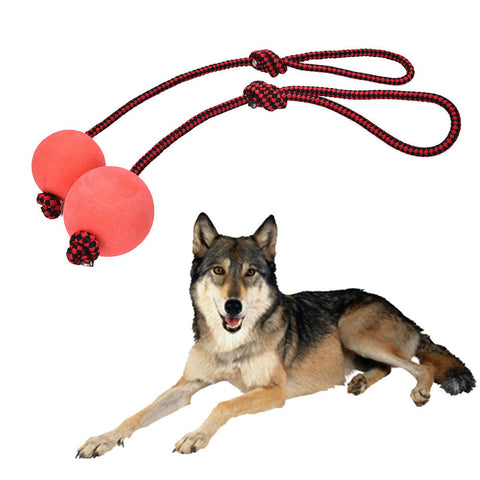 Dog Chew Training Ball