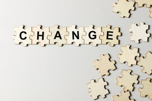 GLOBAL CHANGE MANAGEMENT