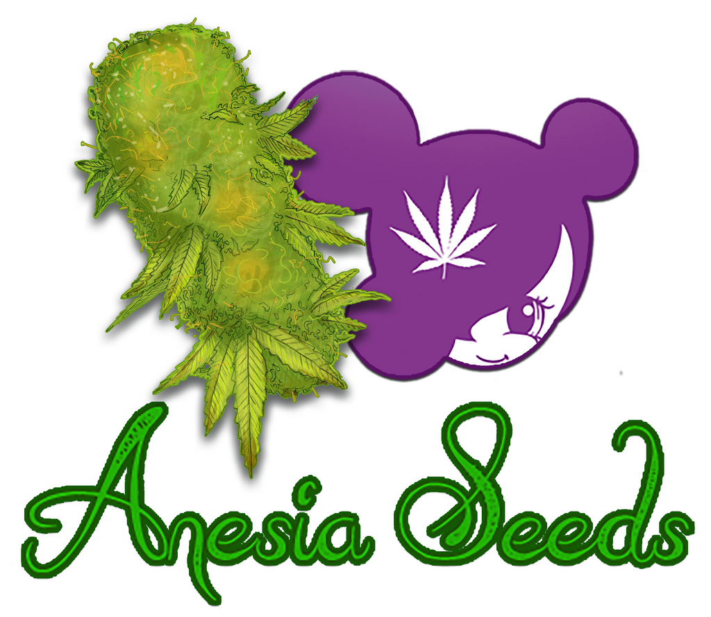 Welcoming you to Anesia Seeds!
