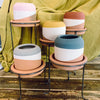 Color Dipped Clay Pot with Metal Base - Blush