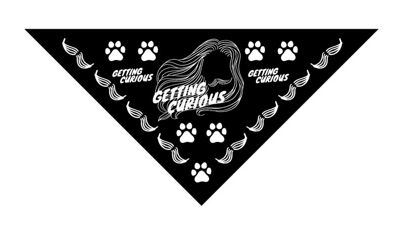 Getting Curious: Pet Bandana